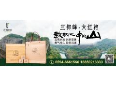 天林茶线上免费加盟