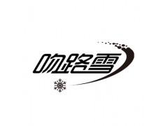 吻路雪室内滑雪体验馆招商加盟
